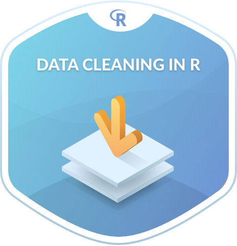 Data Cleaning in R
