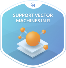 Support Vector Machines in R