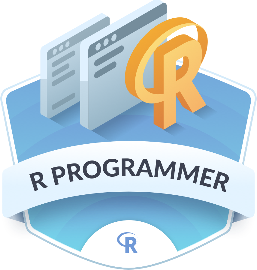 R programmer